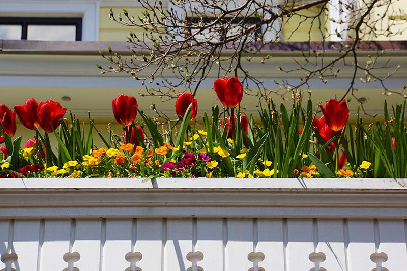 4-2014-wash-dc-ghousetour-wh-garden-annapolis-27000-version-2