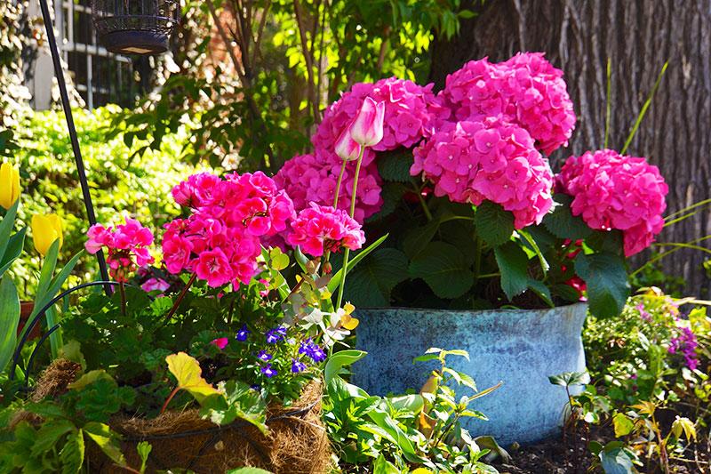 4-2014-wash-dc-ghousetour-wh-garden-annapolis-27123-version-2