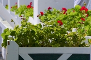 may-2014-mackinac-island-grand-hotel-28692-version-2
