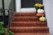 Fall 2016 Georgetown 53733