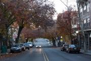 fall-2013-princetondsc09869