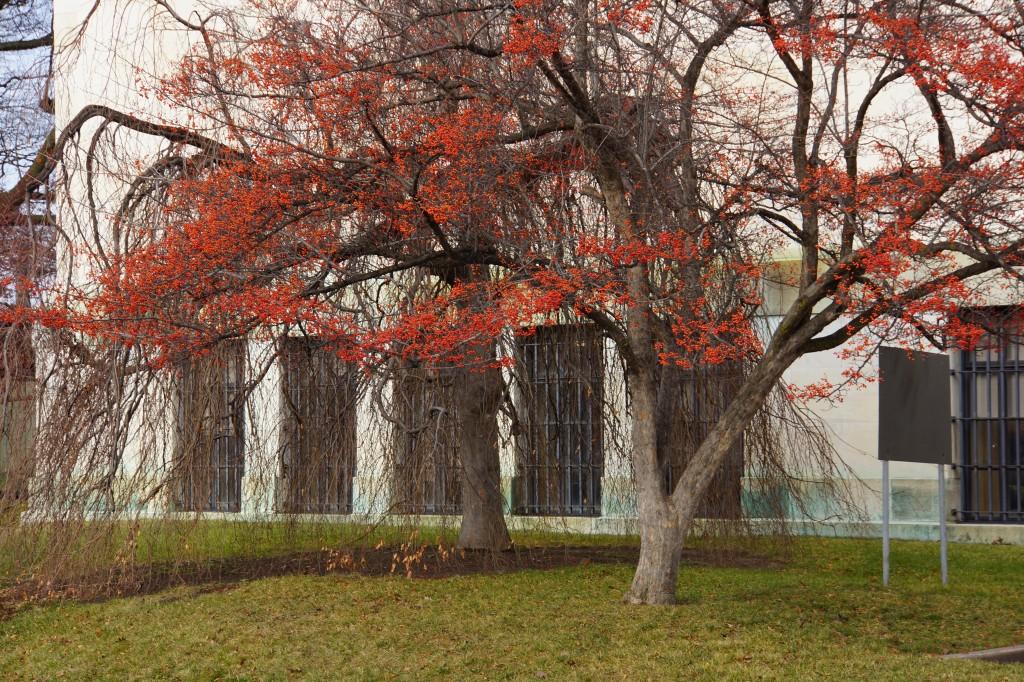 1-2013 Toledo Museum of Art 9543